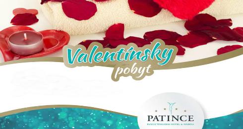 Patince Family Wellness Hotel   Marina - Va - Kam v meste  02740a7660f